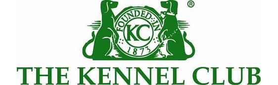 Kennel Club Pet Insurance