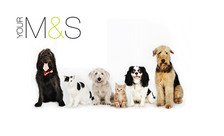 M&S Pet Insurance - Our Verdict